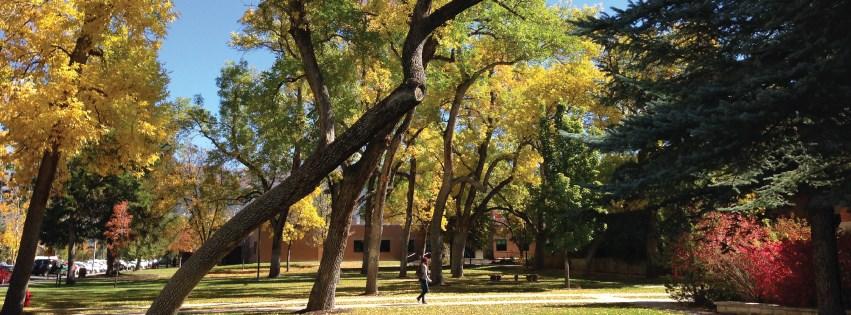 كلية سنو-الصور-2