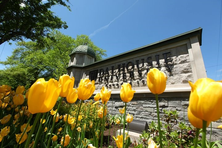 Dalhousie University-Photos-6