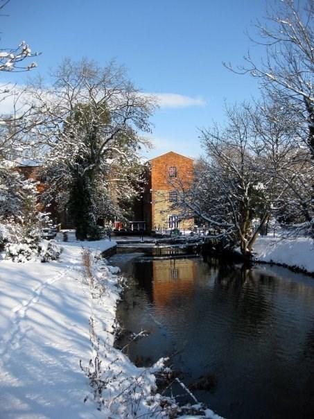 University of Buckingham-Photos-5