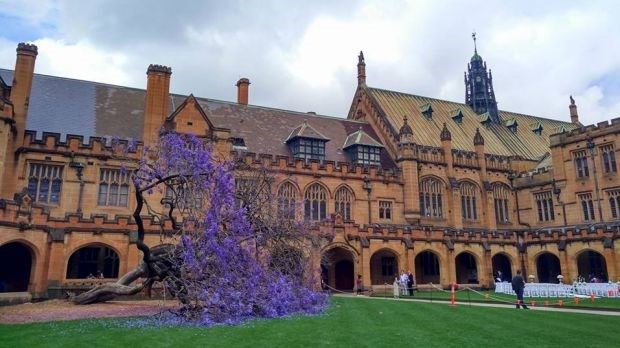 University of Sydney-Photos-6