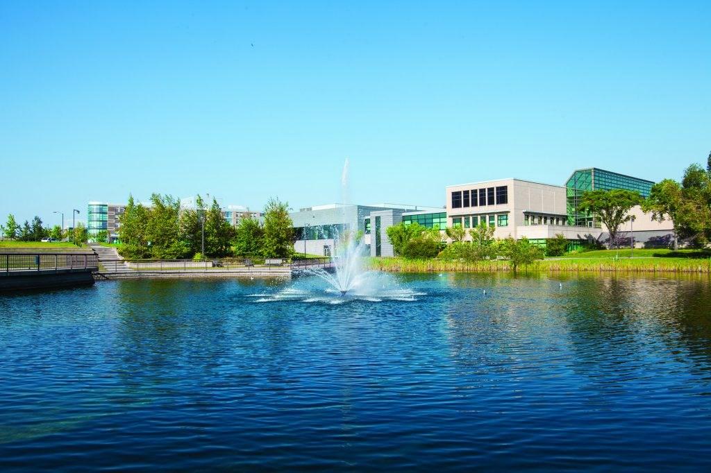 جامعة ماونت رويال-الصور-3