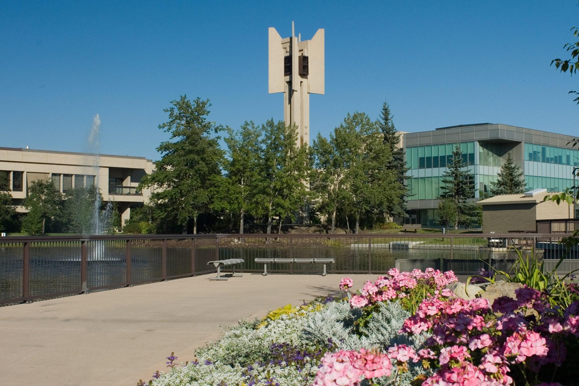 جامعة ماونت رويال-الصور-6