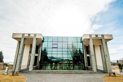 Grigol Robakidze University