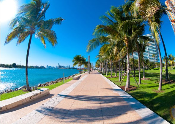 Miami-Photos-4
